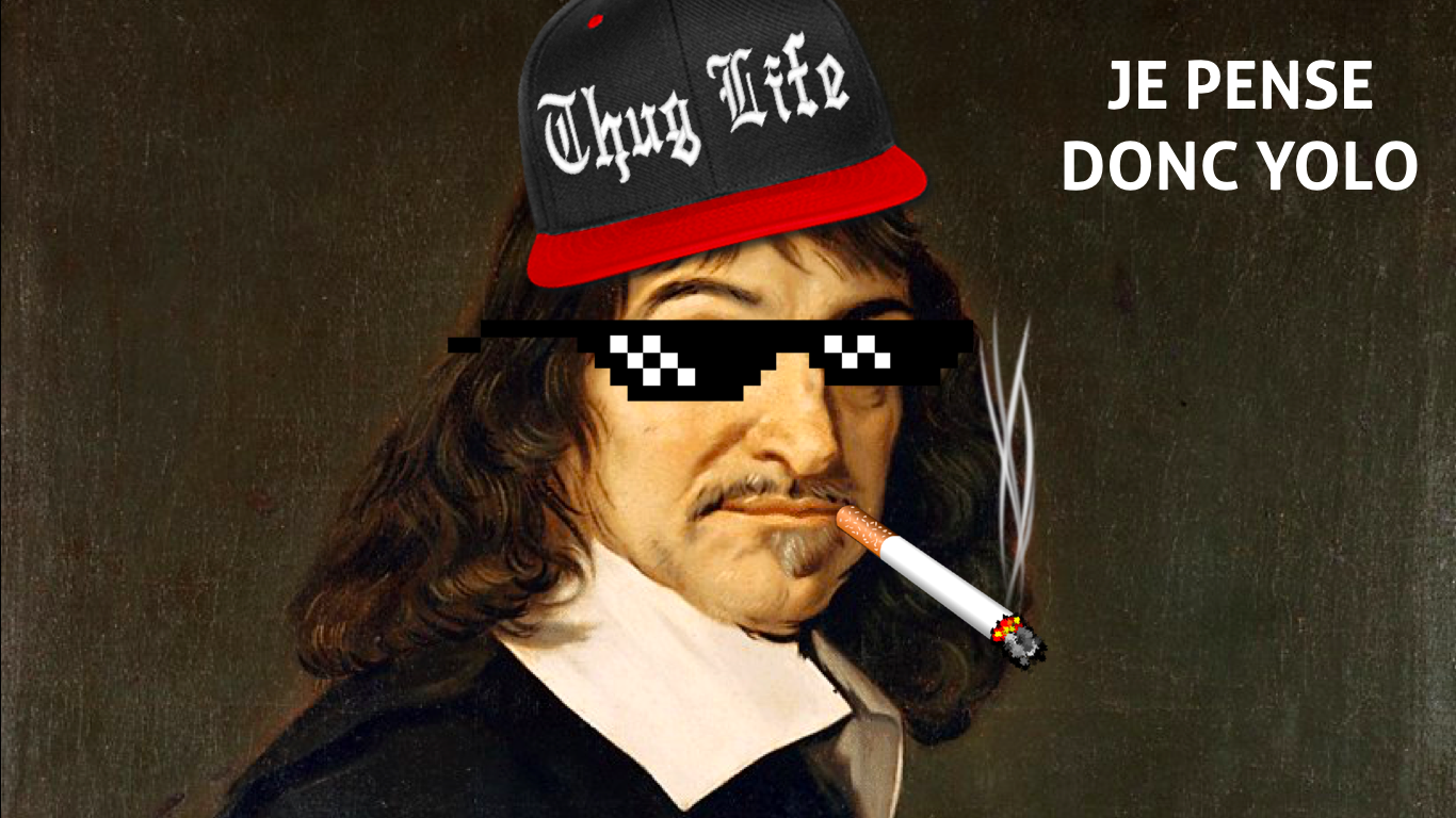 Descartes-le-Y